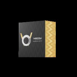 Opakowanie WOSEBA BOX na 2 puszki